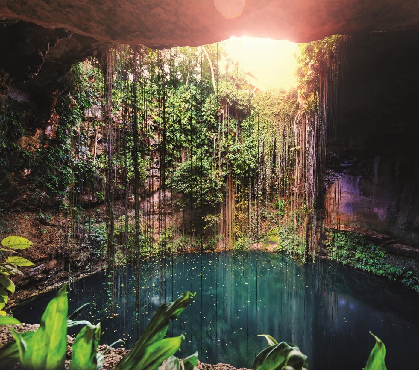 Среднощни стомаси, газирани пещери и още от широкия шарен свят