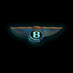 Bentley Driving Goggles - 2