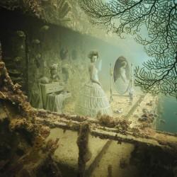 The underwater gallery of Andreas Franke