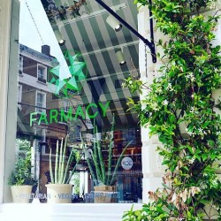 Healthy food and celebrity spotting at Farmacy London - 5