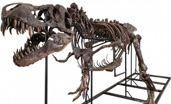 Как да се сдобиеш с динозавър?