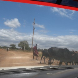 Доброволчеството: Пътешествие с мисия в Танзания - 3