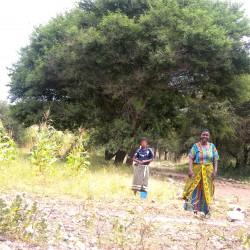 Доброволчеството: Пътешествие с мисия в Танзания - 4