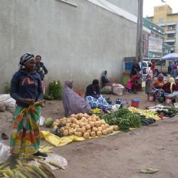Доброволчеството: Пътешествие с мисия в Танзания - 8