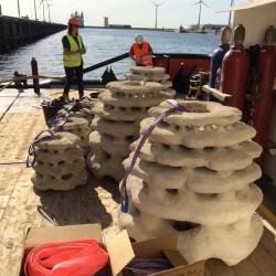Спасяват коралите с 3D принтирани рифове - 3