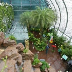 Най-доброто летище е в Сингапур - 5