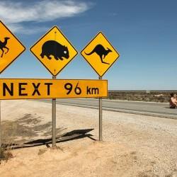 Топ 10 на най-опасните места за шофиране по света