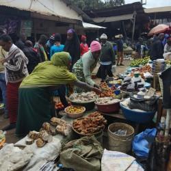 Доброволчеството: Пътешествие с мисия в Танзания - 14