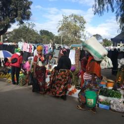 Доброволчеството: Пътешествие с мисия в Танзания - 17