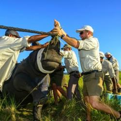 На сафари за запазване на дивите животни - 2