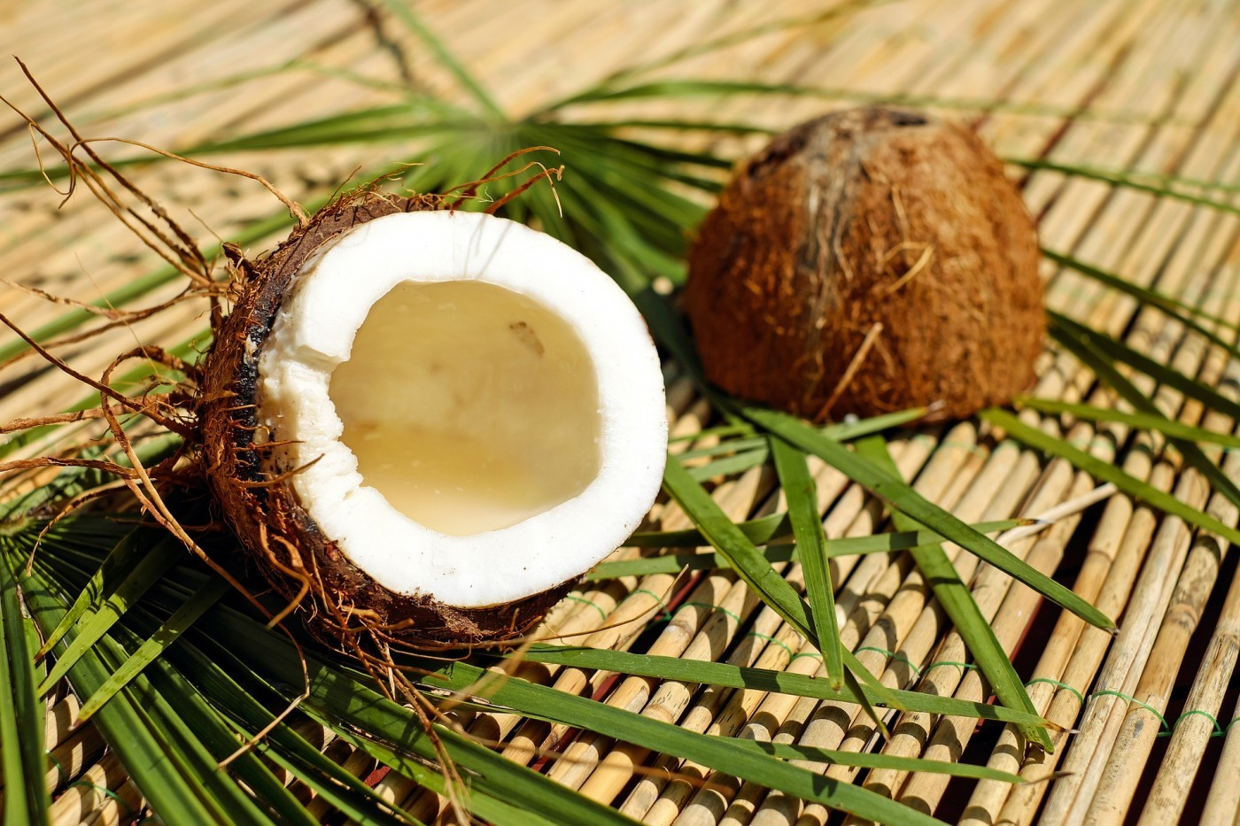 Is coconut oil the future of natural medicine?