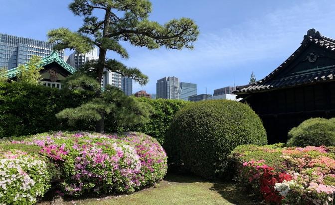 Япония, страна на контрастите