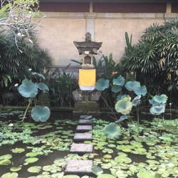 Топ 5 различни преживявания, когато сте в Бали - 9