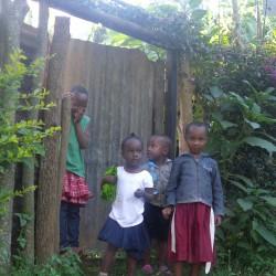 Доброволчеството: Пътешествие с мисия в Танзания - 19