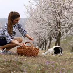 WILDVITALIC: тайната бадемова градина - 4
