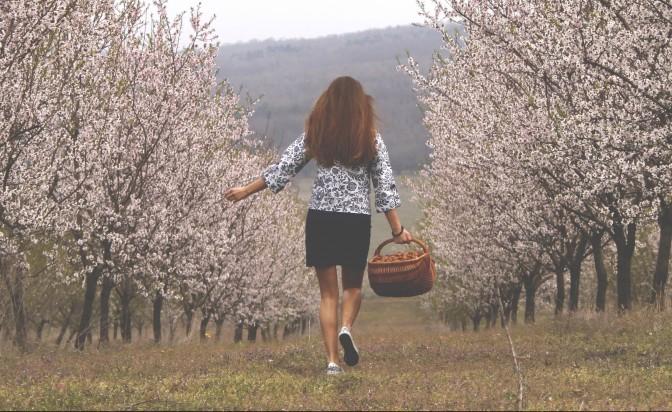 WILDVITALIC: тайната бадемова градина