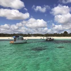 В търсене на преживявания в Западна Австралия
