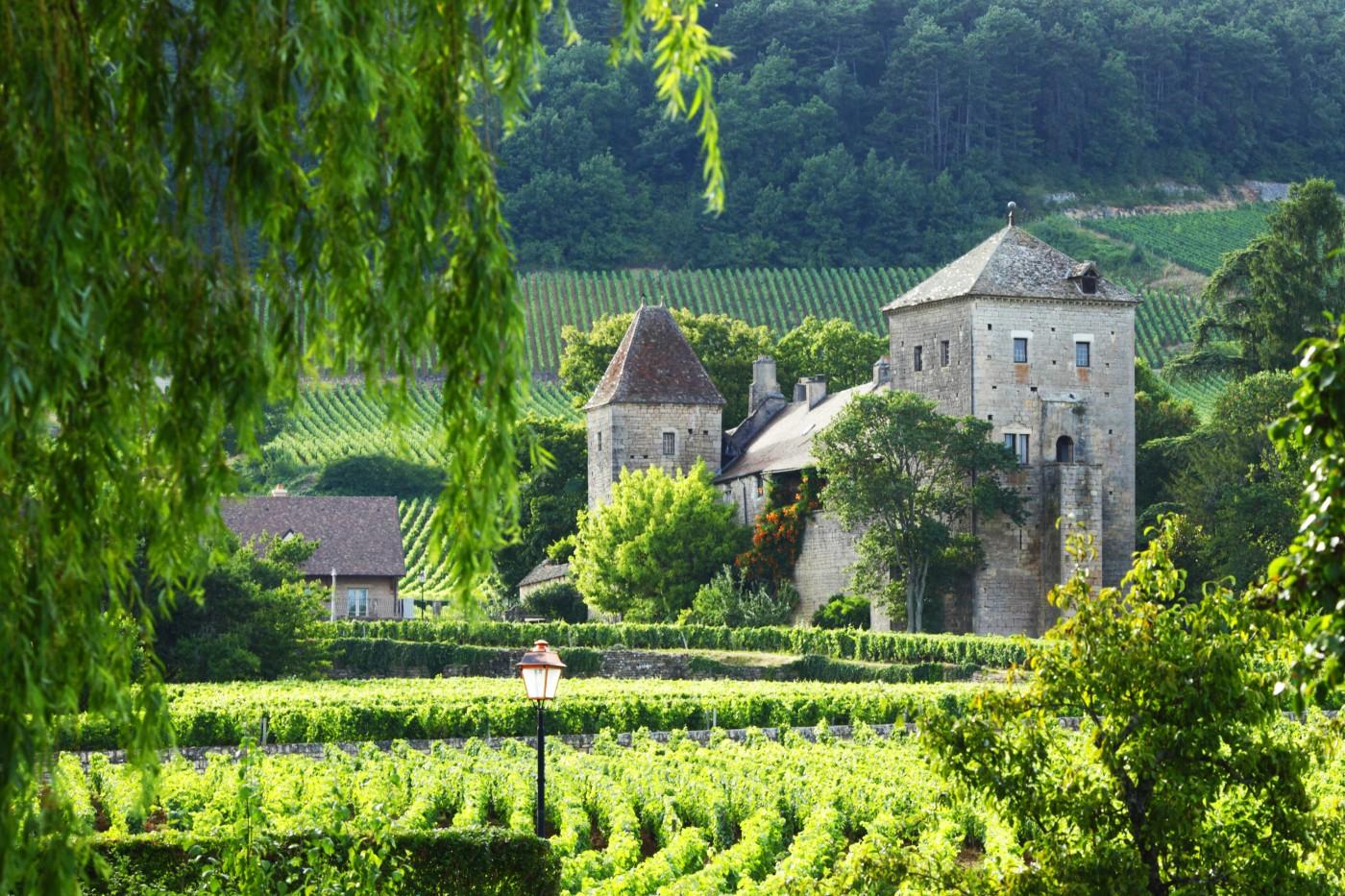 Шампанското вече е световно наследство