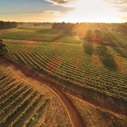 В търсене на преживявания в Западна Австралия - 6