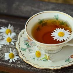 В търсене на перфектната чаша чай - 7