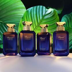 Дръзка, луксозна и етична парфюмерия от Maison de Parfums - 2