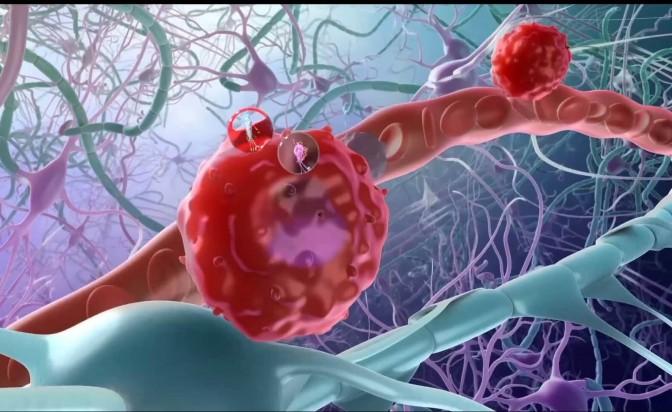 Човешка клетка с големината на цял град