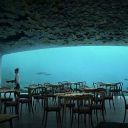 Три месеца до откриването на първия подводен ресторант в Европа - 1