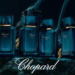Дръзка, луксозна и етична парфюмерия от Maison de Parfums - 5