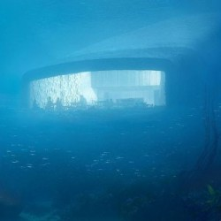 Три месеца до откриването на първия подводен ресторант в Европа - 4