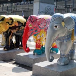 Phuket Randezvous е домакин на Парада на слоновете - 2